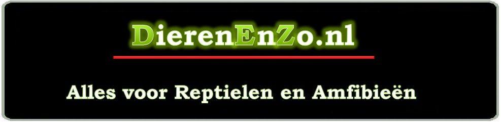 DierenEnZo
